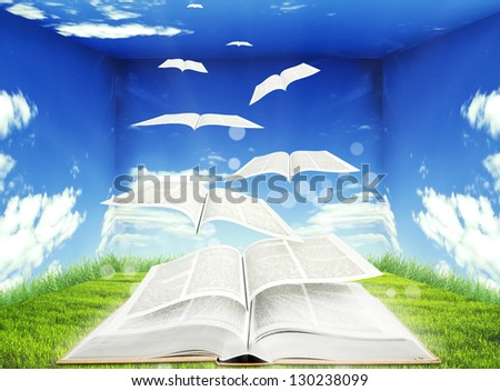 Open book and pages flying into skies - stock photo