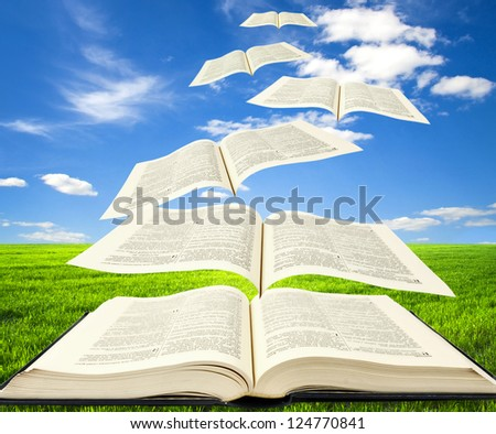Open book and pages flying into sky - stock photo