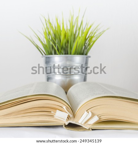 open book and plant
