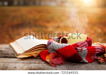 Open book and tea mug with warm scarf on wooden surface