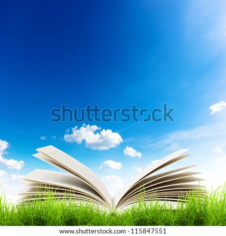 Open book in green grass over blue sky. Magic book background - stock photo