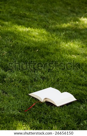 Open book in the grass - stock photo