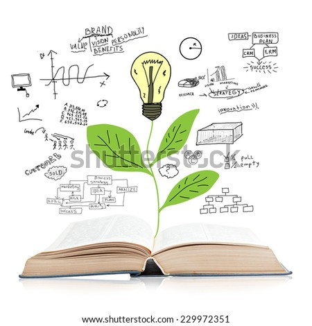 Open book isolated on white background with reflection and a tree with bulb and business plan - stock photo