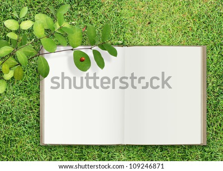 open book on grass under leaf and ladybug - stock photo