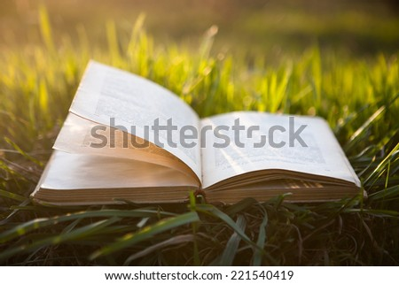 Open book on grass under the sun - stock photo