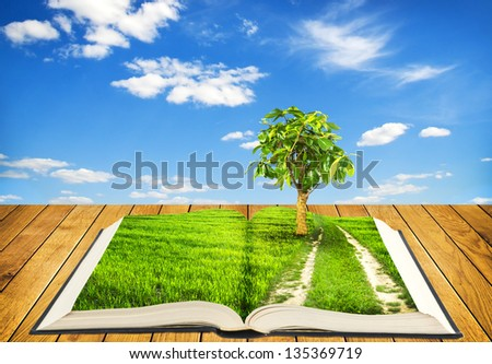 Open book on wooden boards with grass and road with tree on pages on sky background - stock photo