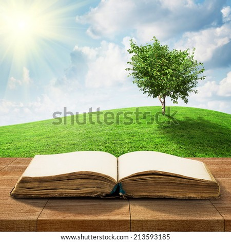 Open book on wooden table over beautiful meadow and sky