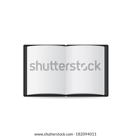 Open book with blank pages.  Raster copy. - stock photo