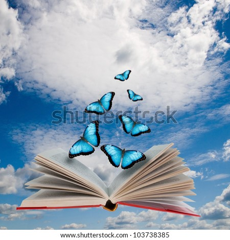 Open book with butterflies flying from it - stock photo