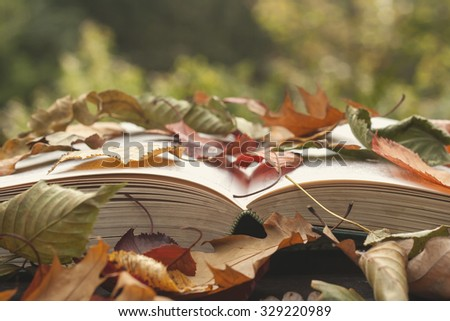 open book with colorful autumn leaves - stock photo
