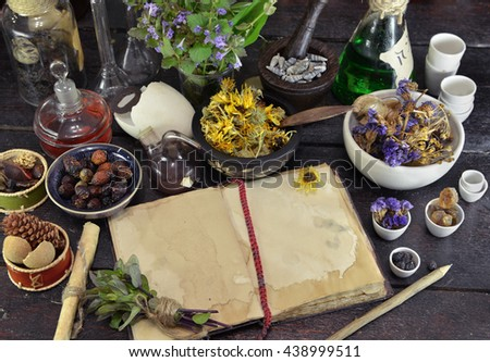 Open book with dry herbs, berries and flowers on witch table. Old pharmacy, esoteric or alternative medicine concept. Black magic and occult objects, medieval homeopathic still life, top view - stock photo