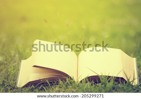 Open book with empty pages in the grass - stock photo