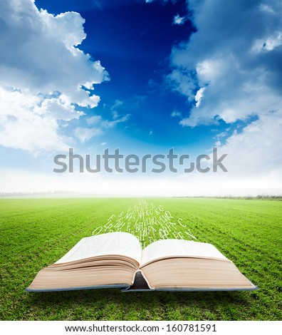 open book with magic flying letters on field background - stock photo