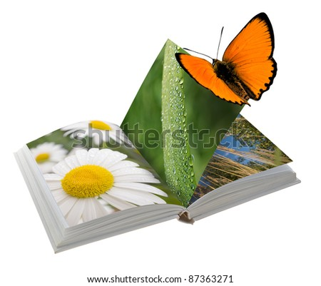 Open book with pictures of nature. Isolated on white background - stock photo