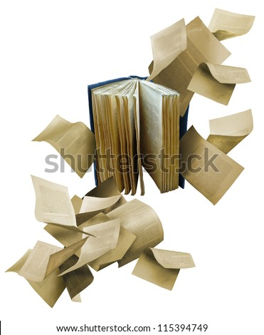 Open book with scattered flying pages - stock photo