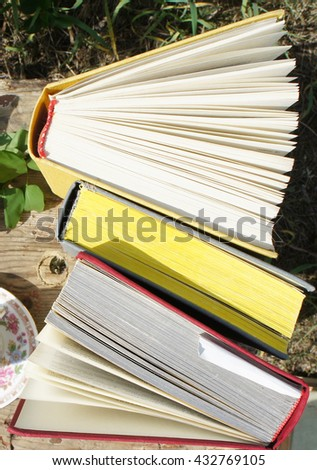 Open books in the garden, top view - stock photo