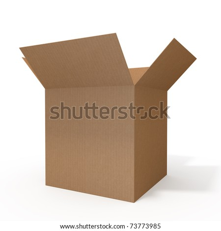 Open cardboard box isolated on white background - stock photo