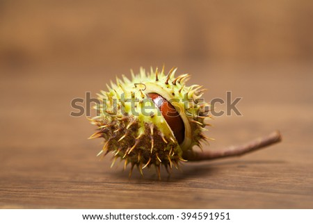 Open chestnut in green nutshell on a wooden table - stock photo