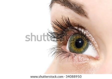 Open colorful eye - stock photo