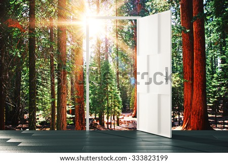 Open door to the sunny forest concept - stock photo