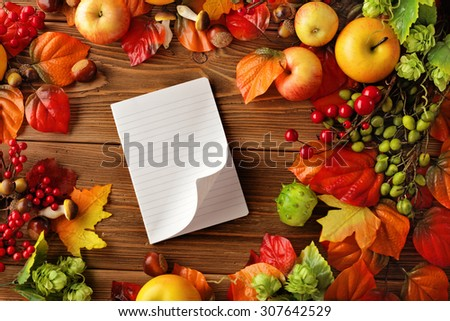 open empty notebook and autumn background - fruits and autumn leaves - stock photo
