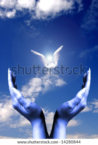 open female hands with a pigeon flying toward a light up above