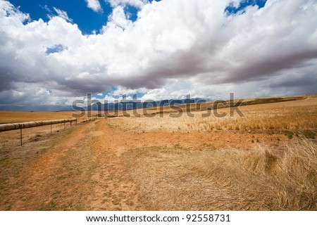 open field in Western Cape, South Africa - stock photo