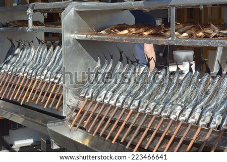 Open Fire Grilled Fish on a Stick - stock photo