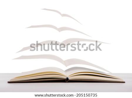 Open flying books - stock photo
