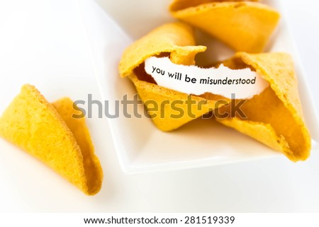 open fortune cookie with strip of white paper - YOU WILL BE MISUNDERSTOOD