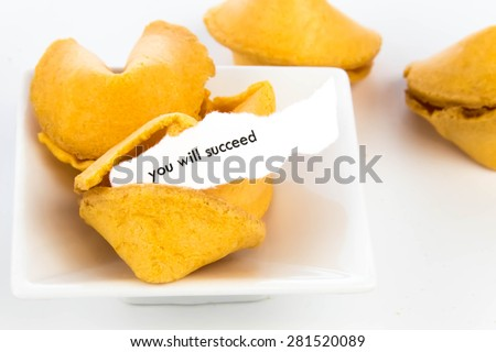 open fortune cookie with strip of white paper - YOU WILL SUCCEED