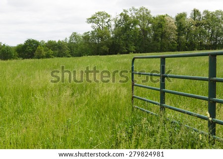 Open gate leading into a grass field - stock photo