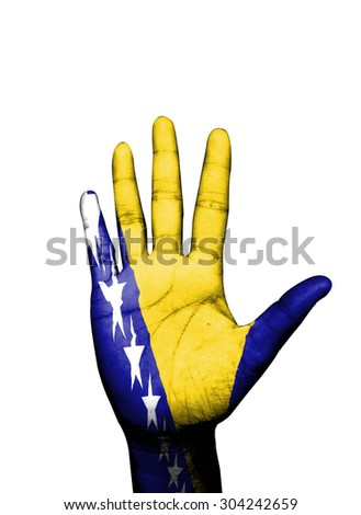 Open hand painted Bosnia flag painted White background