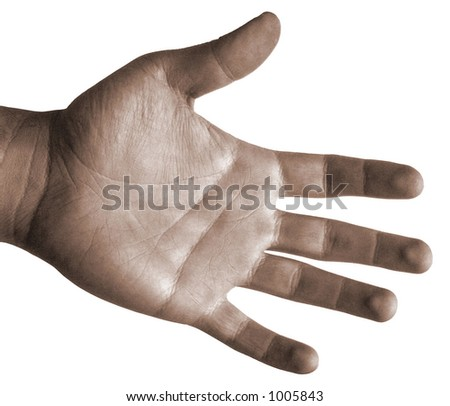 Open Hand Top View - Isolated - stock photo