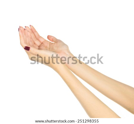 Open hands of a woman. Isolated white background - stock photo