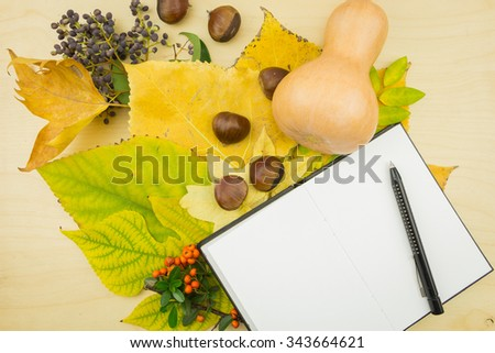 Open notebook with bouquet of yellow, green autumn leaves,berries and seeds. - stock photo