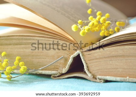 Open old book with yellow mimosa flowers.  Spring still life in sunny warm tones. Selective focus at the book's spine - shallow depth of field - stock photo