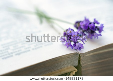 Open old brown covered book with blue lavender flower on top, selective focus - stock photo