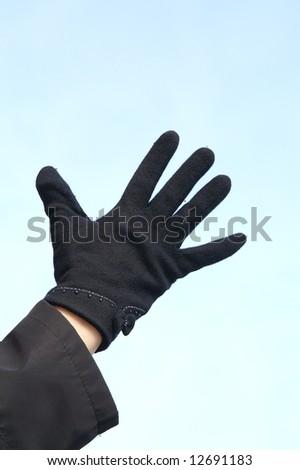 open palm - stock photo