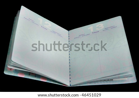 Open passport showing blank Visa pages - stock photo