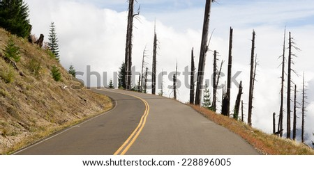 Open Road Damaged Landscape Blast Zone Mt St Helen's Volcano - stock photo