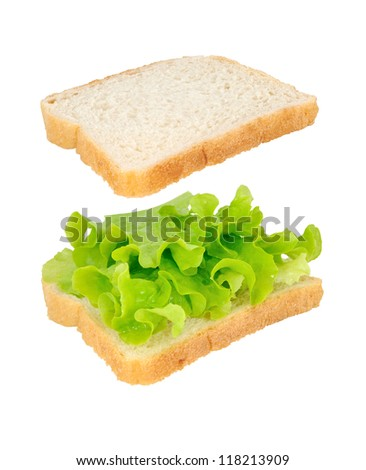 Open sandwich with lettuce isolated on white background