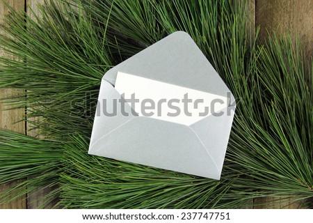 open silver envelope on fir tree - stock photo