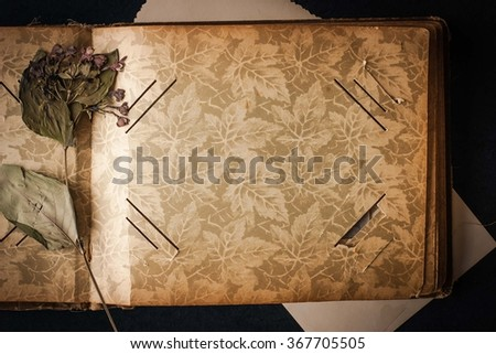 Open  vintage photo album with dried flower top view