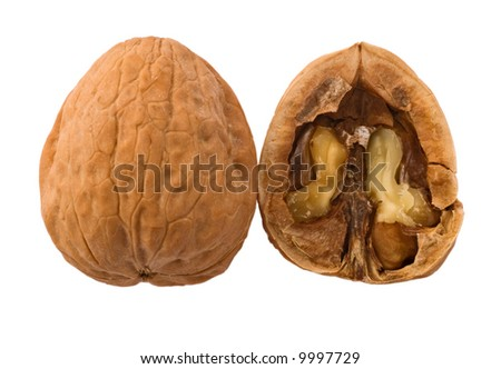 Open walnut isolated on white - stock photo
