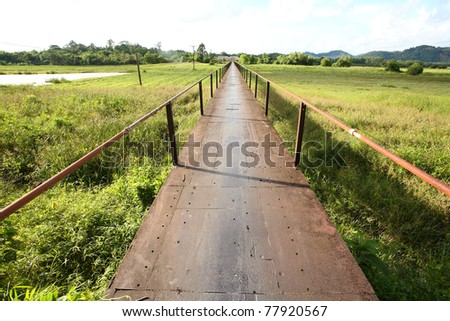 Open Ways with save natur - stock photo