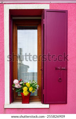Open window with metal shutter and blooming flowers in pots. Burano colorful island. Venive
