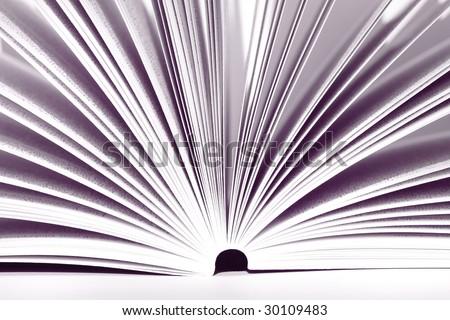 Opened book - colored purple - stock photo
