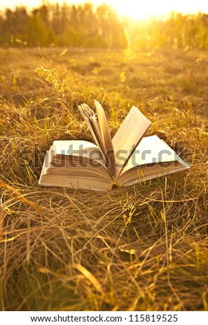 opened book with landscape - lying on yellow grass on sunset
