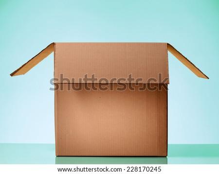 Opened cardboard box on beautiful light Green Background - stock photo